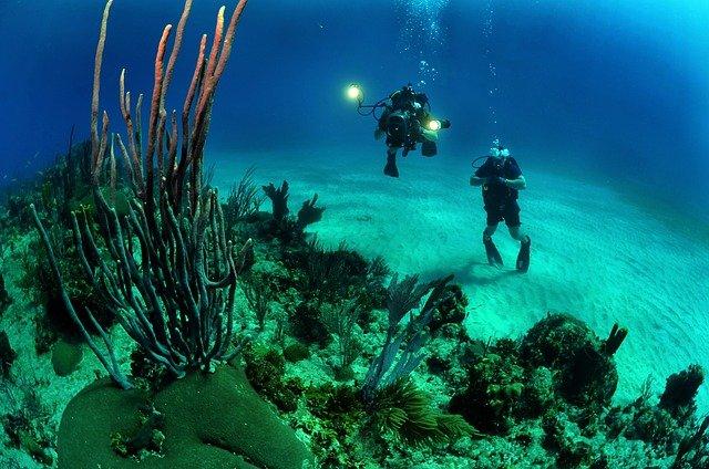 buceo recreativo en un fondo arenoso