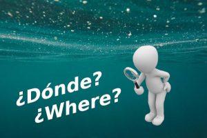 La inmersión de búsqueda del segundo curso