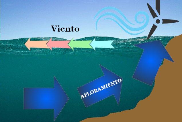 Gráfico de una corriente de afloramiento en este medio subacuático