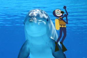Delfín con buceador equipado