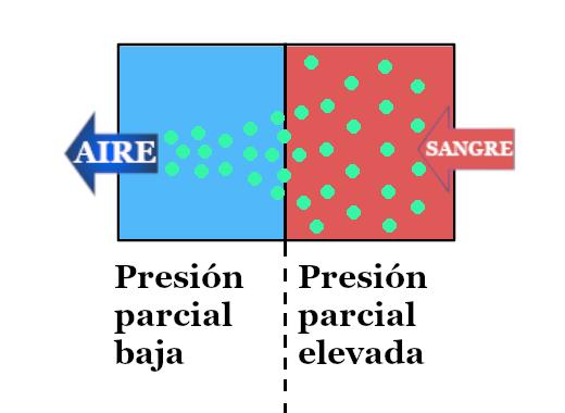 desaturación de nitrógeno