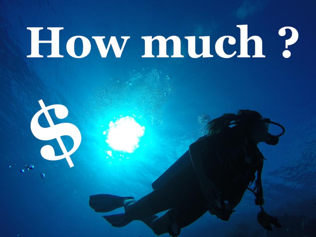 Cuál es el precio de un curso de buceo.