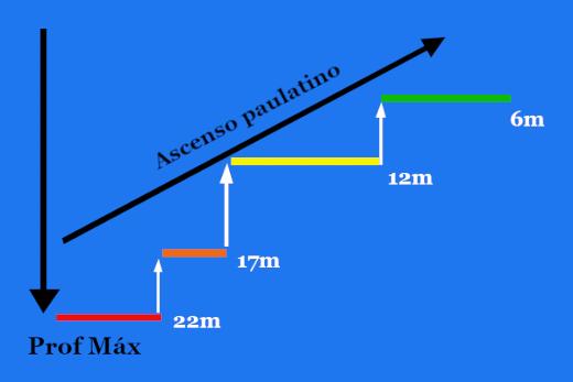 Buceo en perfil multinivel